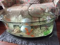 Fish Tank Coffee Table Uk Fish Tank Coffee Tables Uk Coffee Addicts