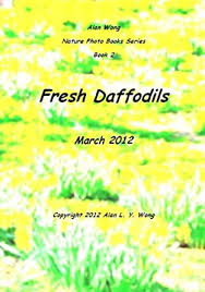 Fresh Daffodils (Nature Photo Book Book 1) eBook: Wong, Alan L. Y. :  Amazon.ca: Kindle Store