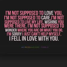 Endless Love Quotes Simple Endless Love Quotes 48 QuotesBae