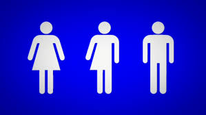 Bathroom Symbol Unique Genderneutral Bathroom Signs Coming To Evanston Abc48chicago