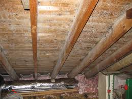 mold in attic. Delighful Attic Attic Ceiling Mold Removal  Beverly MA  In Advanced Testing And Remediation Services