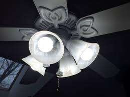 incandescent light bulb in fan