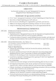Resume Summary Example Sample Template Functional Worksheet How To