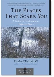 Pema Chodron Quotes Unique Buddhism In The West Pema Chodron Quotes The Places That Scare