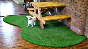 fake grass carpet indoor. Wonderful Indoor 5 Examples Of Astroturf Used INDOORS  Curbly  DIY Design Community Throughout Fake Grass Carpet Indoor F
