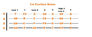 5 Fiddle Chords For Beginners To Start With Stringvibe