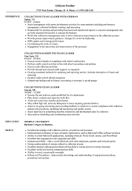 Collections Team Leader Resume Example Lead Education Classic