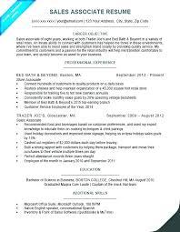 Resume Of Sales Associate Sales Associate Experience Resume Sales New Sale Associate Resume