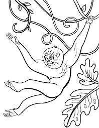 Here are 20 monkey coloring pages to print for your kids to color. Free Monkey Coloring Page