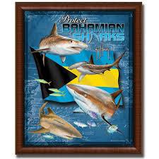 protect bahamian sharks posters artwork