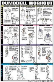 Dumbbell Exercises For Men Chart Pin On Weight Training Women Beginners