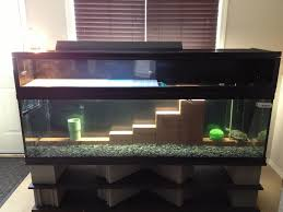 Awesome Mario themed turtle aquarium.