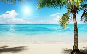 Image result for picture of the beach