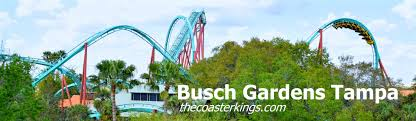 alexander tigris at busch gardens tampa bay has been open for a couple weeks now with a few rides under our belt we decided to take some time to do a