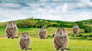 Species Diversity Definition Mtle Life Science Population Species Diversity Videos Lessons