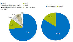 two pie charts show the racial and ethnic makeup of the u s potion white