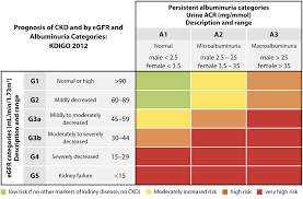 Ckd Classification Chart Kidney And Heart Disease Whats The Connection