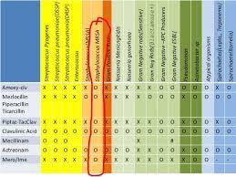 Gram Positive Antibiotics Chart Spectrum Of Commonly Used Antibiotics