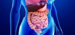 التهاب القولون الأعراض   الاسباب   التشخيص   العلاج   حياة   HAEAT