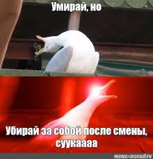 Создать мем Как сделать ЭТОТ ГРЕБАННЫЙ ОТЧЕТ ПО ПРАКТИКЕ чайка  ЭТОТ ГРЕБАННЫЙ ОТЧЕТ ПО ПРАКТИКЕ чайка 721