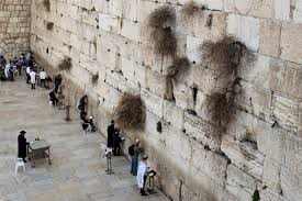 Wall Nikki Haley Says What White House Wont The Western Wall Is In