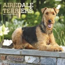 online dating pros vs cons of airedale