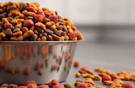 Best Dog Food For Great Danes Why You Should Be Careful