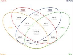 four circle venn diagram fig 2 four way venn diagram representation of comparison of snps