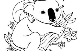 Small Picture koala coloring pages Just Colorings
