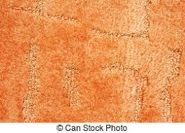 orange carpet texture. a orange carpet texture