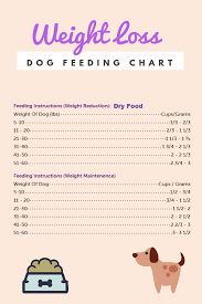 Dog Weight Loss Chart Pin On Dog Health And Pain Help