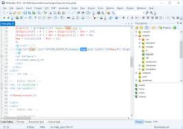 webuilder code editor screenshot