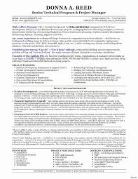 It Project Manager Resume Sample Technical project manager resume summary best of solution 44