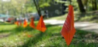 Apwa Uniform Color Code Chart What Are These Little Colored Flags In My Yard Utility