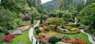 overview whale watching and butchart gardens tour