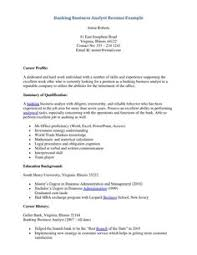 Business Analyst Resume Summary Examples Resume Summary Examples Banking Sample for Customer Service format 64