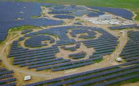 Image result for solar farm  panda