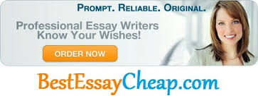 how to write an essay introduction for essaywriters com professional essay writers any level and deadline