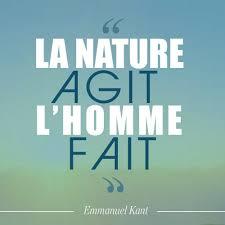 10 Citations Sur La Nature Des Grands Auteurs Dhier Et Daujourd