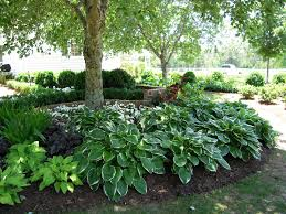 Garden Design For Shaded Area Colorful Shade Garden Ideas For Front Yard Shade Plants