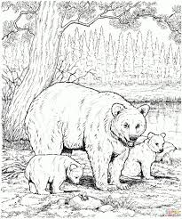 Realistic Animal Coloring Pages Baby Animals Coloring Pages Free