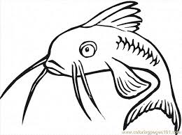 Small Picture Catfish 16 Coloring Page Free Catfish Coloring Pages