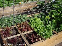 revive any garden using the square foot and french intensive planting methods page 2 of 2 d i y bullseye