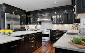 black-cabinets-and-stainless-steel-appliances