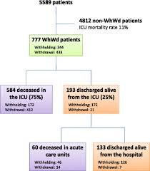 Flow Chart Whwd Withhold Or Withdraw Treatment Icu