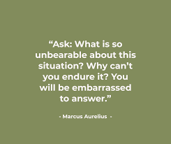 Stoicism Quotes Extraordinary Once You Learn These 48 Stoic Truths From Marcus Aurelius You'll Be