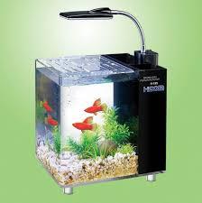 office aquarium. hidomaquariumfishtank10and15litre office aquarium