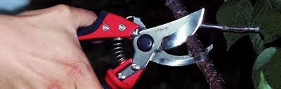 Ars Bypass Pruner With Rotating Handle Hp Vs8r Product Review
