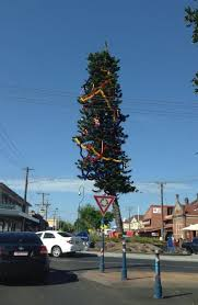 Is Lismoreu0027s Christmas Tree The Worst In The State  Daily TelegraphWorst Christmas Tree