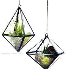 geometric hanging terrarium hanging air plant terrarium geometric air plant terrarium hanging string garden green gift